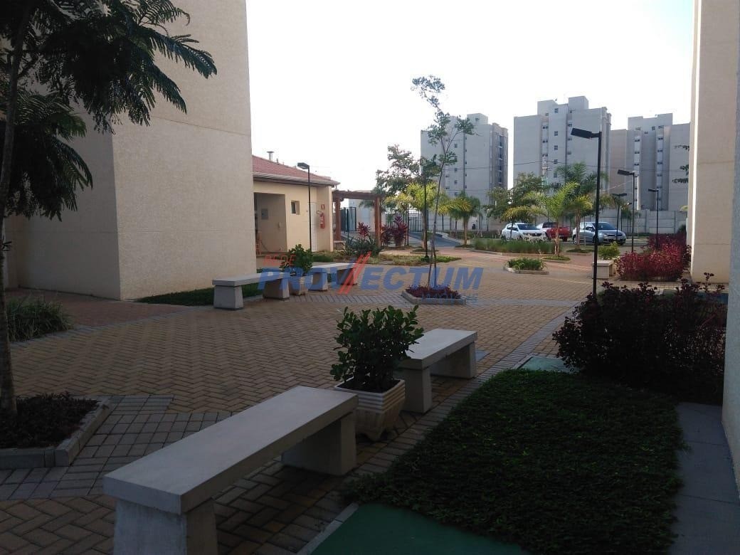 apartamento à venda em jardim dulce (nova veneza) - ap272127