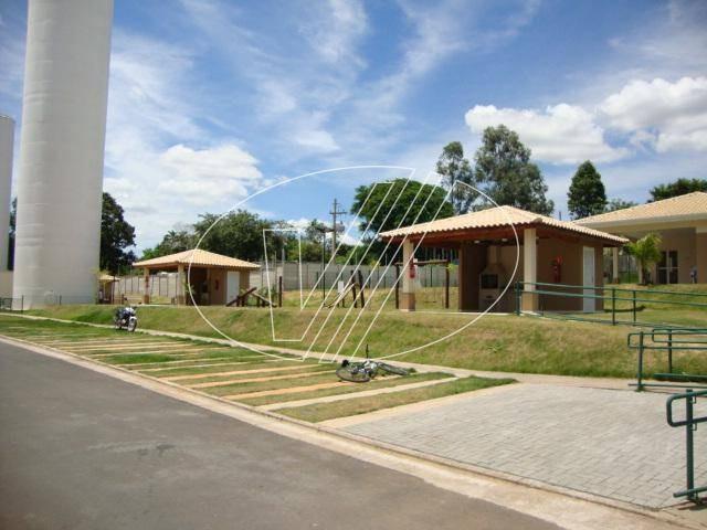 apartamento à venda em jardim são gerônimo (nova veneza) - ap245012