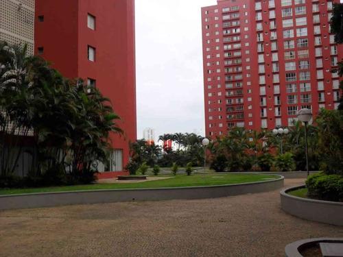 apartamento - venda - jardim das laranjeiras - 5