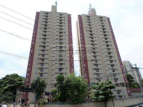 apartamento - vila leonor - ref: 17206 - v-17206