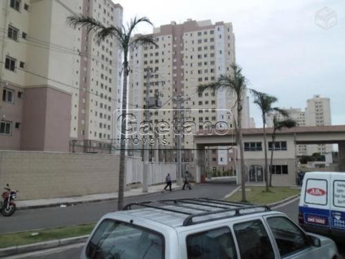 apartamento - vila venditti - ref: 16439 - v-16439