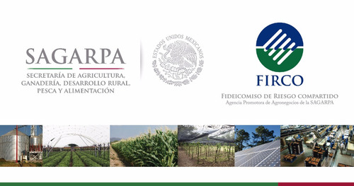 apoyos federales expedientes sagarpa energía renovable