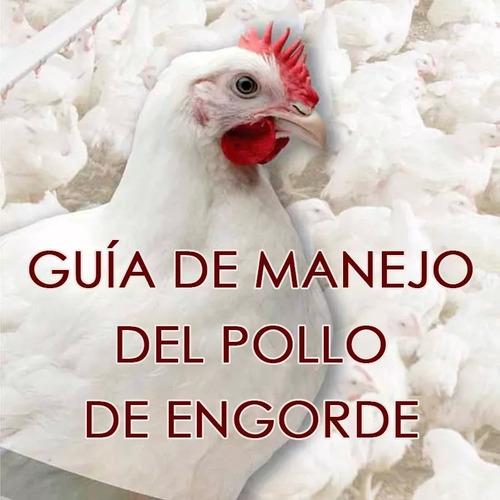 aprenda cria de  gallinas ponedoras pollos de engorde el org