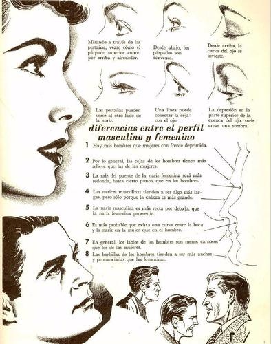 aprende a dibujar la cabeza y el cuerpo humano explicado
