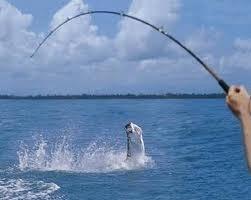 aprende a pescar los señuelos, nudos y técnicas de pesca