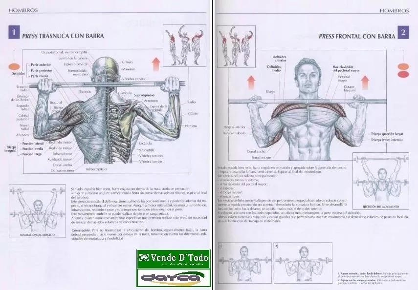 Aprende Anatomia De Los Movimientos Musculares Fisioterapia ...