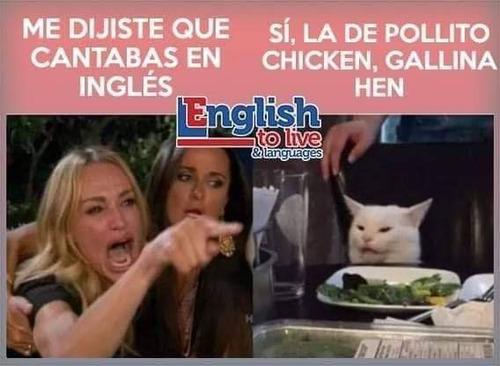 aprende inglés en tan solo 9 meses
