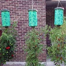 aprende siembra cultivo sistema invertido huerto semillero
