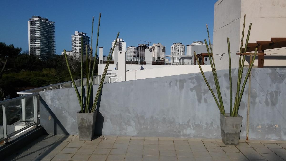 apto penthouse c terraza y parrillero , gran balcon!