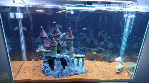 aquário 120l - completo