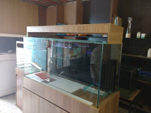 aquario 120x40x50 marinho