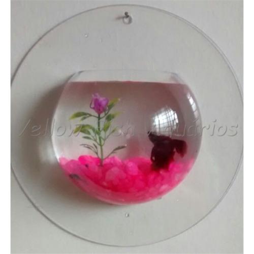 aquário beteira de parede aquaplant litwin 700 ml - betta
