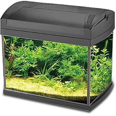 aquário boyu zj-601 60l