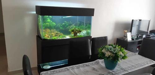 aquario c/ movel  200 lts 6mm 100x40x50