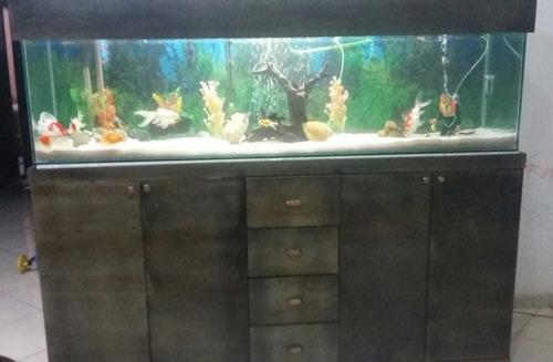aquário completo dos metros com move e tudo