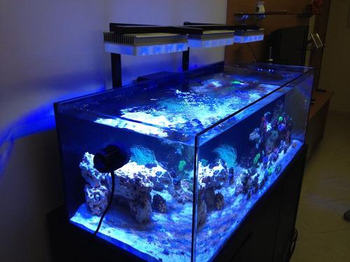 aquário marinho 450 litros - somente vidro