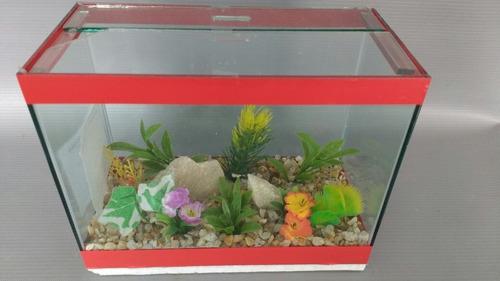 aquário mini beteira jardim retangular 3lts decorado