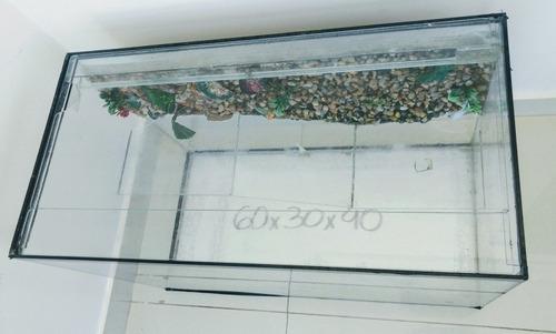 aquário terrarium