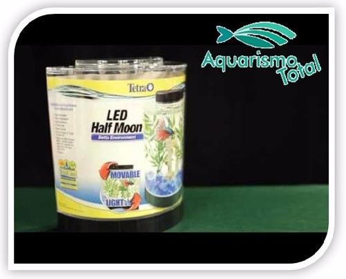 aquário tetra em acrílico com led peixe betta meia lua beta