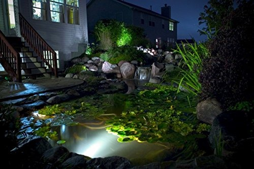 Aquascape 1w contractor pond y landscape spot light paquete aquascape 1w contractor pond y landscape spot light paquete aloadofball Image collections