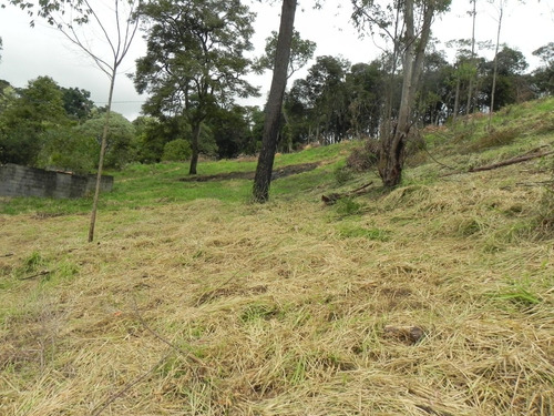 ar terreno 250m² (10x25) próximo a fernão dias