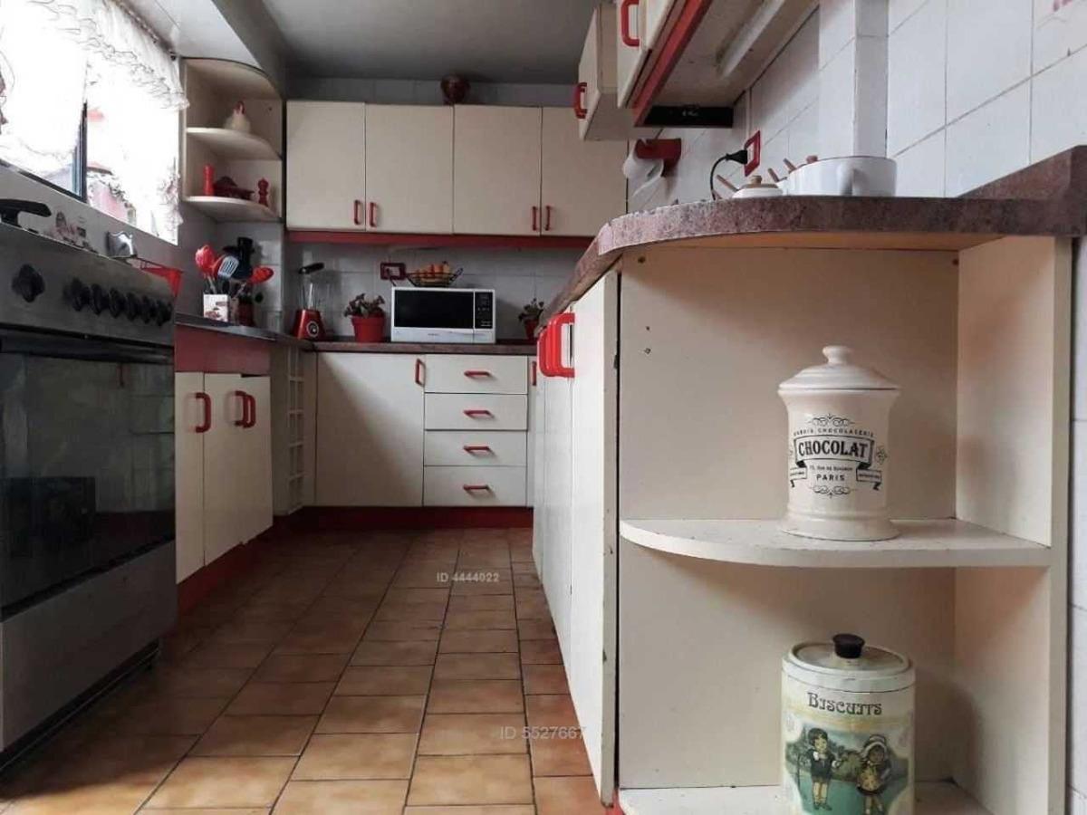 araucanía con rojas magallanes