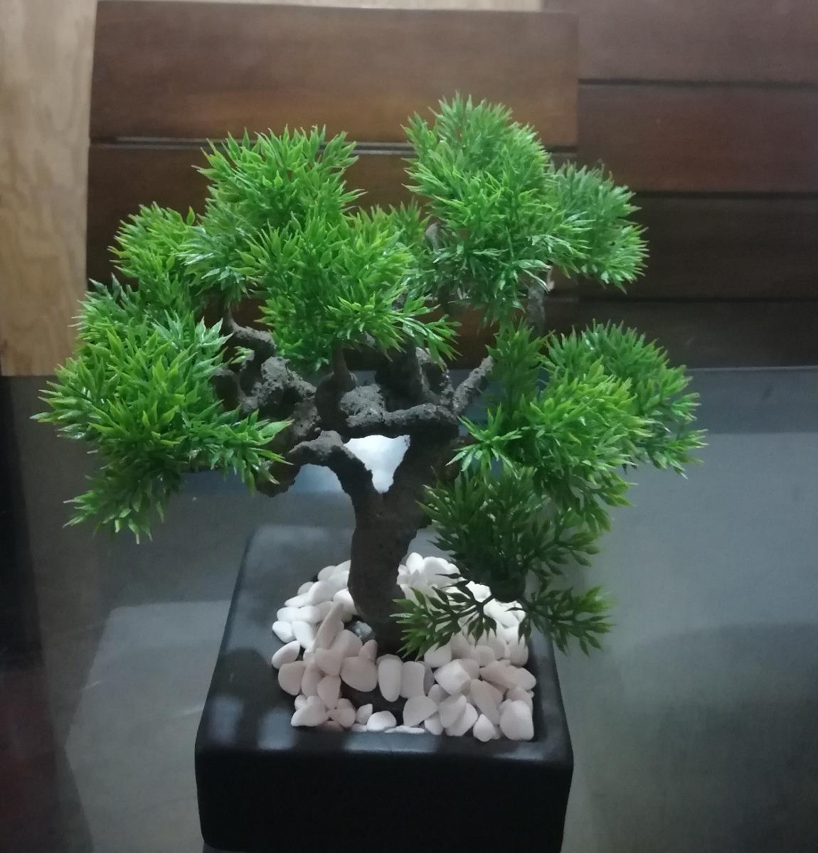 Arbol bonsai tania artificial en mercado libre - Plantas para bonsai ...