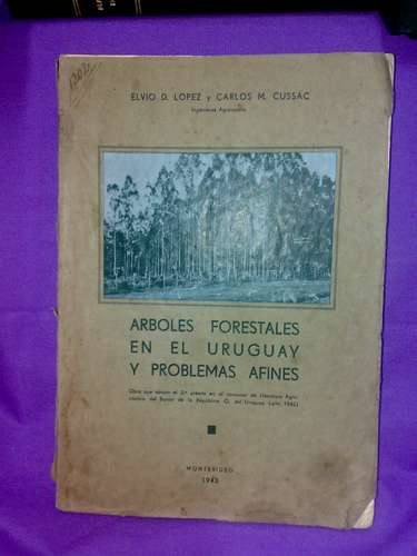 árboles forestales en el uruguay y problemas afines