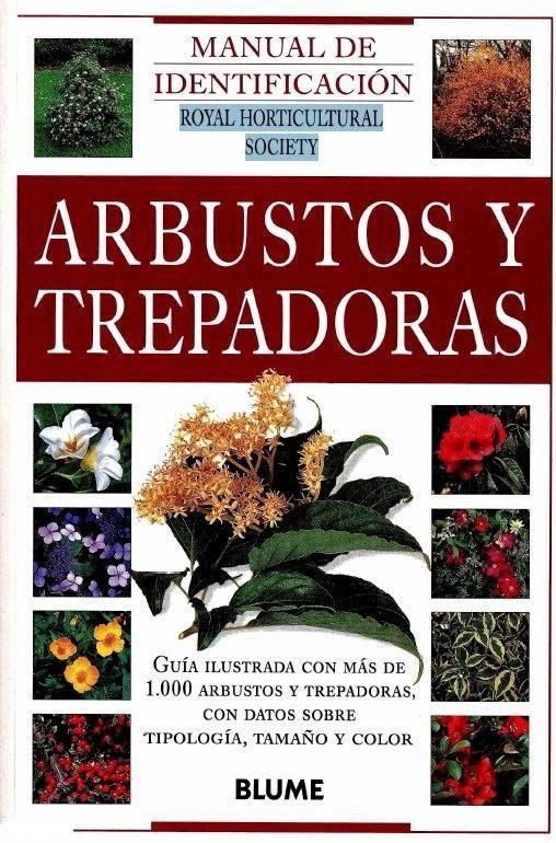 Arbustos artificiales ornamentales y trepadoras - Lista nombre arbustos ...