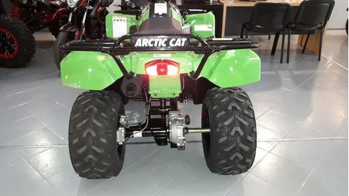 arctic cat 300 - panella motos