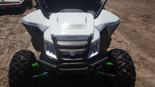 arctic cat cat