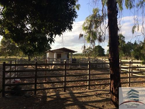 área 15ha a venda em cana brava, macaíba