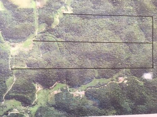 área  223 hectares, podendo fazer 51 chácaras. ref. 3950 m h