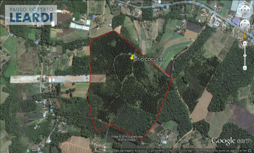 area centro - salesópolis - ref: 499528
