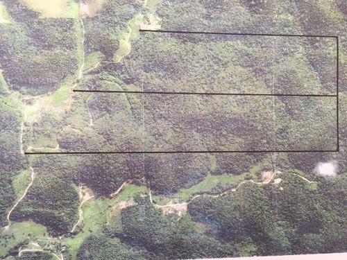 área com 223 hectares, podendo fazer 51 chácaras 3950