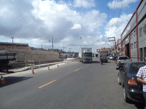 área comercial no uruguai - ref: 517144