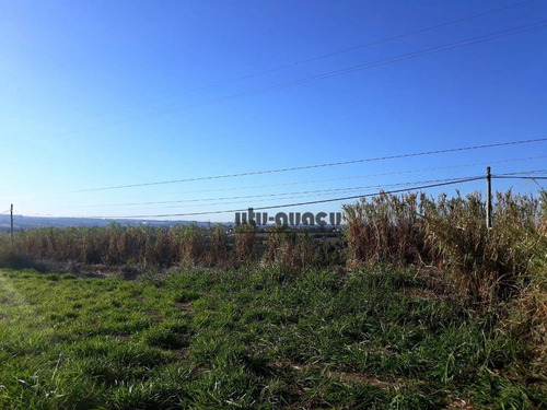 área comercial à venda com 100 metros de frente para a rodovia, indaiatuba - ar0146. - ar0146
