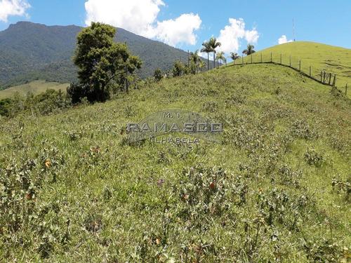área de 11.780 m² - ideal para incorporação - te0231 - 33591390