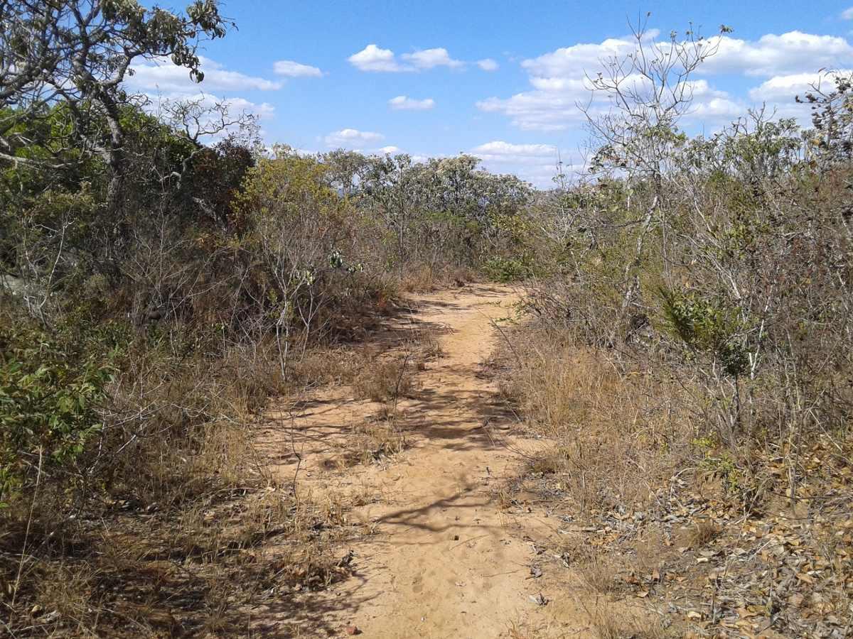 área de terra 80.000 mil m² 8 hectares - diamantina mg