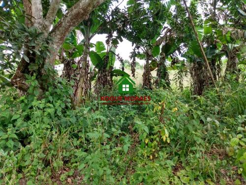 área de terreno 55.000m² c/ 2 casas modestas e lago.ref:0080
