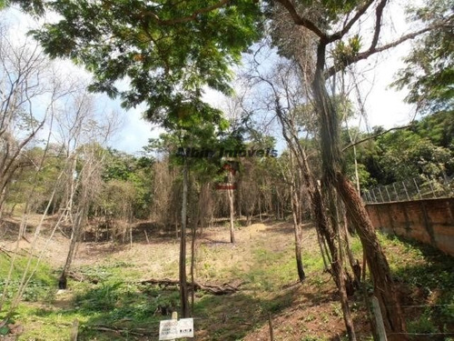 area em itaipu - 0316a
