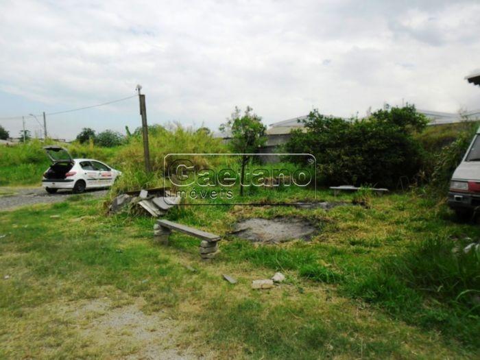 area industrial - cidade parque sao luiz - ref: 16607 - l-16607
