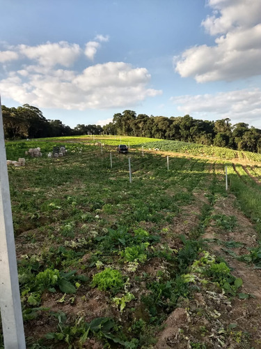 area para construir chacaras 1200 m2 a 2 km da rodovia j
