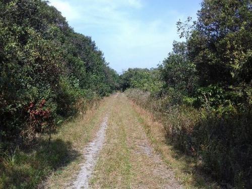 área para formar chácara no gaivota a 4 km da rodovia 3362 e