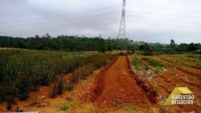 área para loteamento ou plantação vários riachos - 2357
