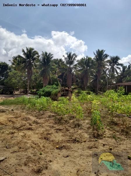 área para venda em rio largo - ar-020_1-1023766