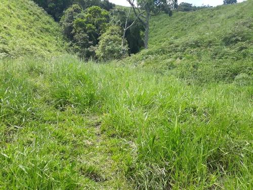 área rural para venda - área rural com 12 hectares com cacho - 837