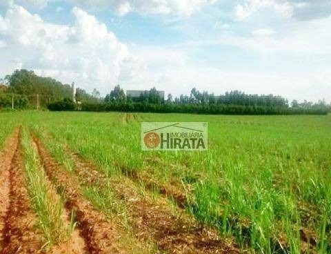 área rural à venda, parque da represa, paulínia. - ar0024