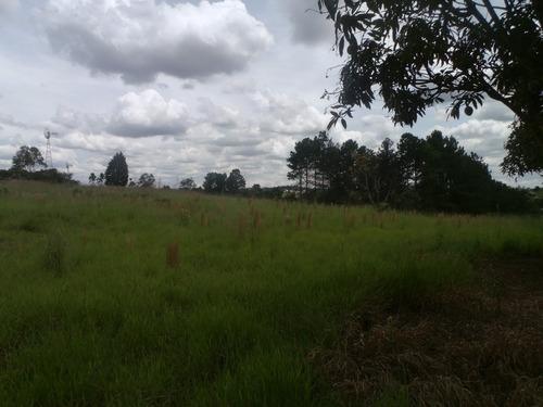 área total 48.000 metros quadrados, duas casas simples.