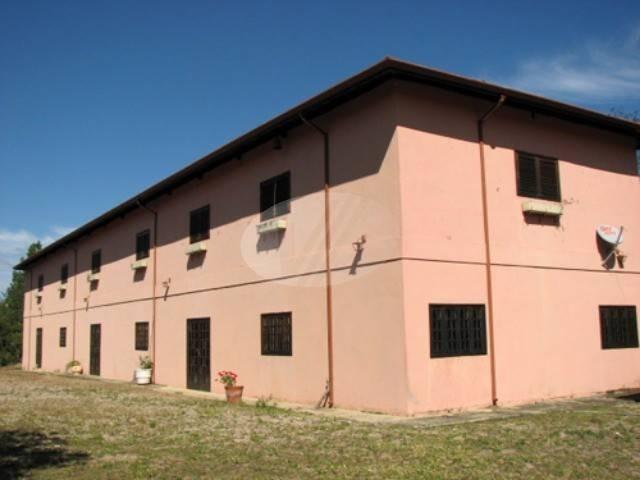 área à venda em amparo - ar189873